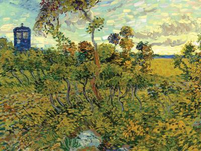Vincent Van Gogh Tardis at Montmajour
