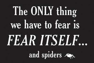 Fear Spiders Snorg Tees Poster