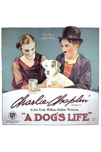 A dog/'s life Charlie Chaplin cult movie poster print
