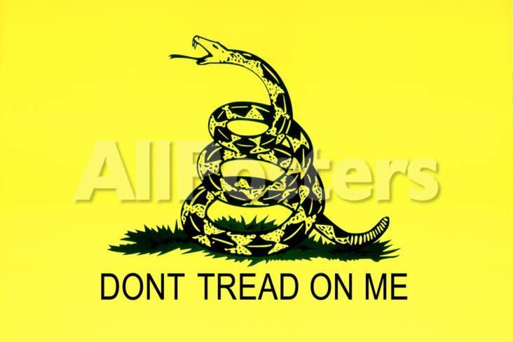 Gadsden Flag Don T Tread On Me Tea Party Historical