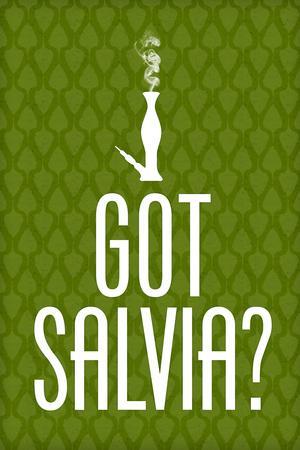 Got Salvia? Green Smoking Poster Print