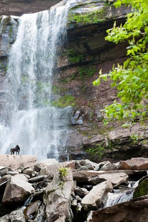 Catskills NY Waterfall Photo Print Poster