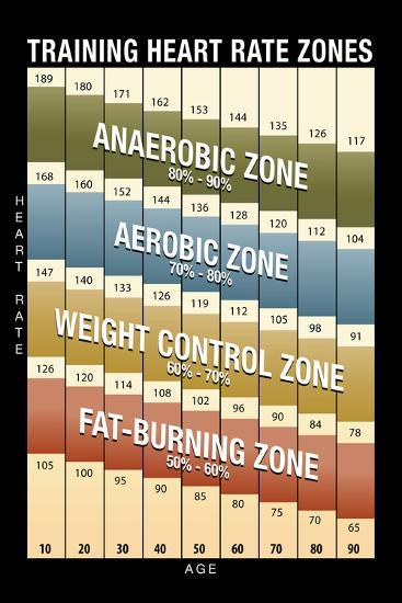 Training Heart Rate Zones Chart Modern Posters At Allposters