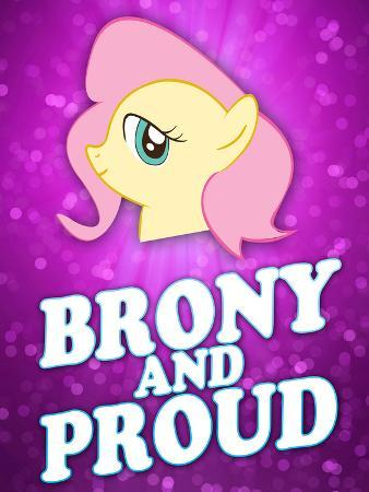 Brony and Proud Pony