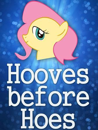 Hooves Before Hoes Brony