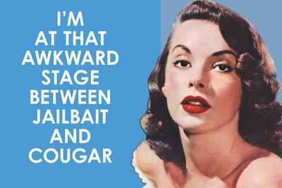 I'm at that Awkward Stage between Jailbait and Cougar Funny Art Poster Print
