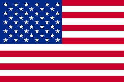 American Flag Poster Print