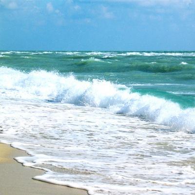 Teal Surf I