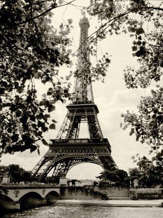 Eiffel Tower II - black and white