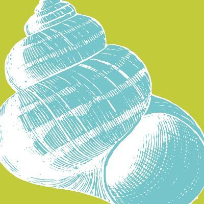 Graphic Shell III
