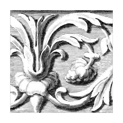 Sculptural Detail I