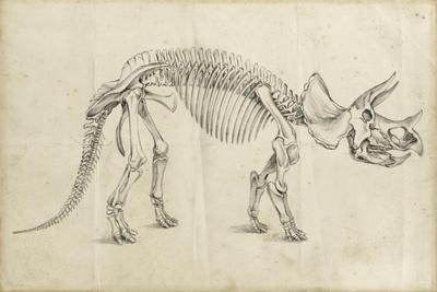 Dinosaur Study II