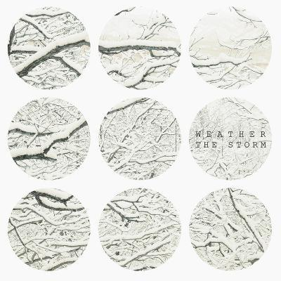 Inspirational Circle Design - Snowy Branches