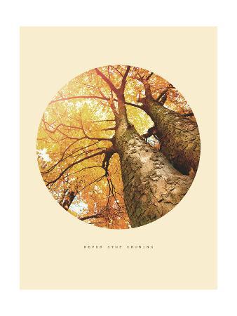 Inspirational Circle Design - Autumn Trees: Never Stop Growing