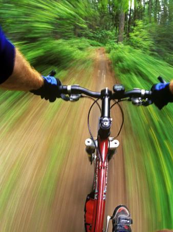Mountain Bike Trail Riding