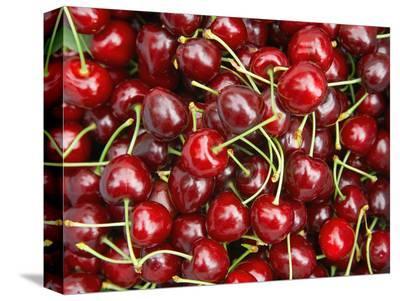Cherries, Ripponvale, near Cromwell, Central Otago, South Island, New Zealand