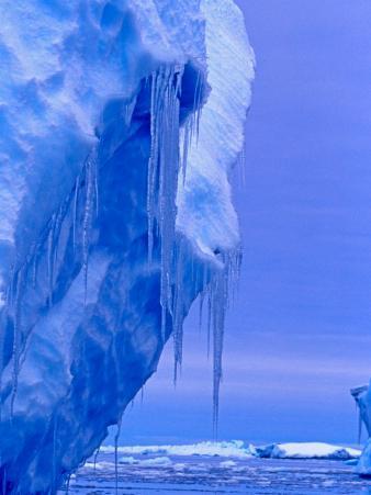 Blue Icebergs, Antarctica