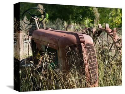 Old Abandoned Farm Tractor, Defiance, Missouri, USA