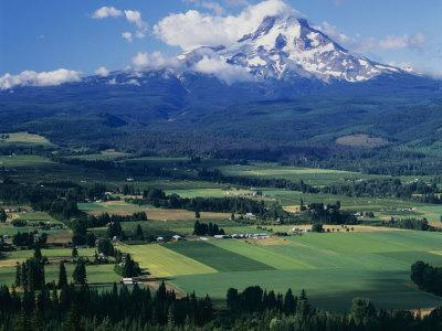 Mt. Hood, Hood River Valley, Oregon, USA