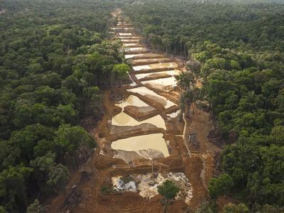 Alluvial Gold Mining in the Rainforest, Guyana