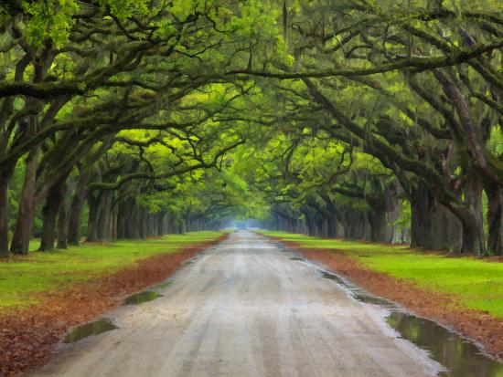 Wormsloe Plantation, Savannah, Georgia, USA Photographic ...