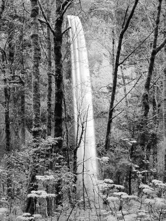 Latourell Falls, Columbia River Gorge National Scenic Area, Oregon, USA