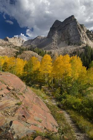 Lake Blanche Trail in Fall Foliage, Sundial Peak, Utah