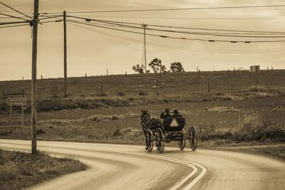 USA, Pennsylvania, Dutch Country, Paradise, Amish Horse and Buggy