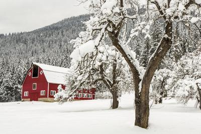 Fresh Snow on Red Barn Near Salmo, British Columbia, Canada