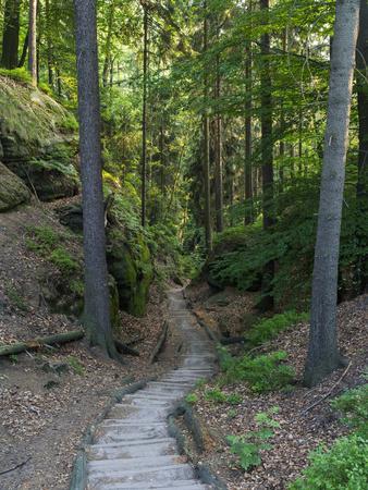 Elbsandsteingebirge, in the NP Saxon Switzerland. Hiking Trails