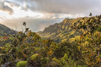 Overlooking the Kalalau Valley Right before Sunset