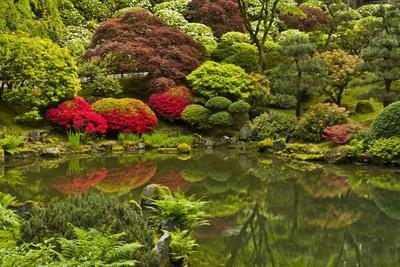 Pond, Strolling Garden, Portland Japanese Garden, Oregon, Usa