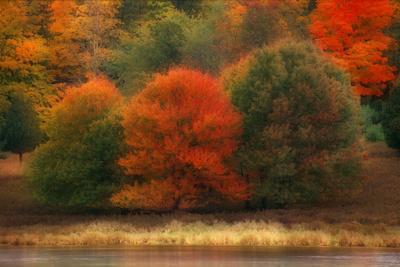 USA, Pennsylvania, Pocono Mountains. Autumn Landscape Montage