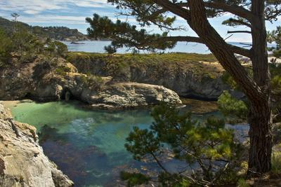 China Cove, Point Lobos State Reserve, Carmel, California, USA
