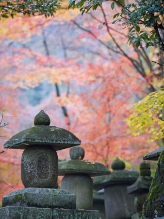 Asia, Japan; Kyoto, Sagano, Nison in (Nisonin) Temple