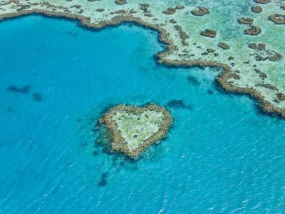 Aerial View of Heart Reef, Part of Great Barrier Reef, Queensland, Australia