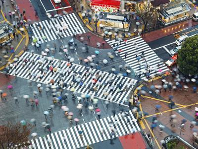 Asia, Japan, Tokyo, Shibuya, Shibuya Crossing - Crowds of People Crossing the Famous Intersection a