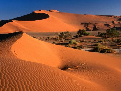 Namib Sand Dunes, Nambia Desert Park, Namib Desert Park, Erongo, Namibia