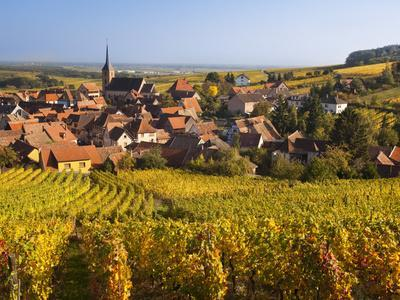 France, Bas-Rhin, Alsace Region, Alasatian Wine Route, Blienschwiller, Town Overview from Vineyards