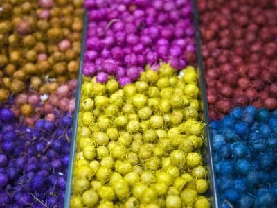 Different Kinds of Anise Seeds; Belo Horizonte Indoor Market, Minas Gerais, Brazil
