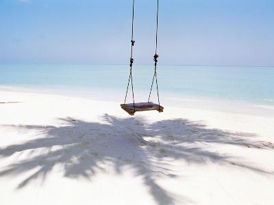 Beach Swing And Shadow of Palm Tree on Sand