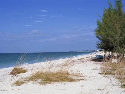 Beach, Anna Maria Island, Gulf Coast, Florida, United States of America, North America