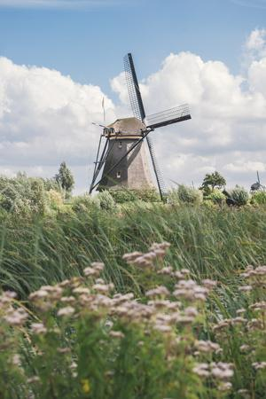Canal and Windmills, Kinderdijk, UNESCO World Heritage Site, South Holland, the Netherlands, Europe