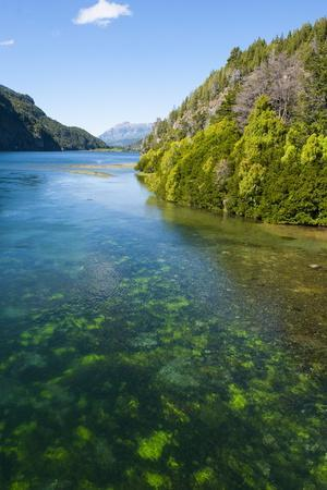 Crystal Clear Water in the Los Alerces National Park, Chubut, Patagonia, Argentina, South America