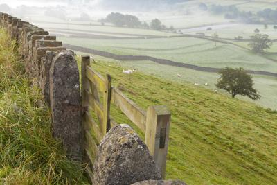 Gate in Stone Wall and Field