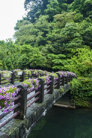 Stone Bridge with Flowers in Seogwipo