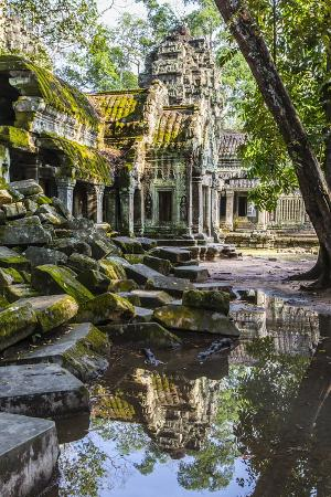 Reflections at Ta Prohm Temple (Rajavihara)