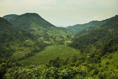 Mountainous Scenery in Southern Uganda, East Africa, Africa