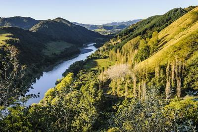 View over the Whanganui River in the Lush Green Countryside