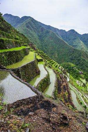 Batad Rice Terraces, Part of the UNESCO World Heritage Site of Banaue, Luzon, Philippines